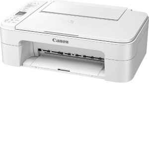 Impresora Canon blanca