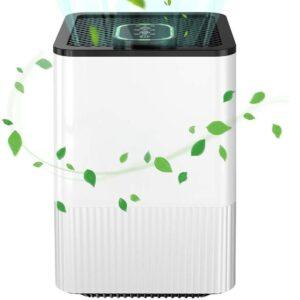 Ionizador de ozono con filtro hepa